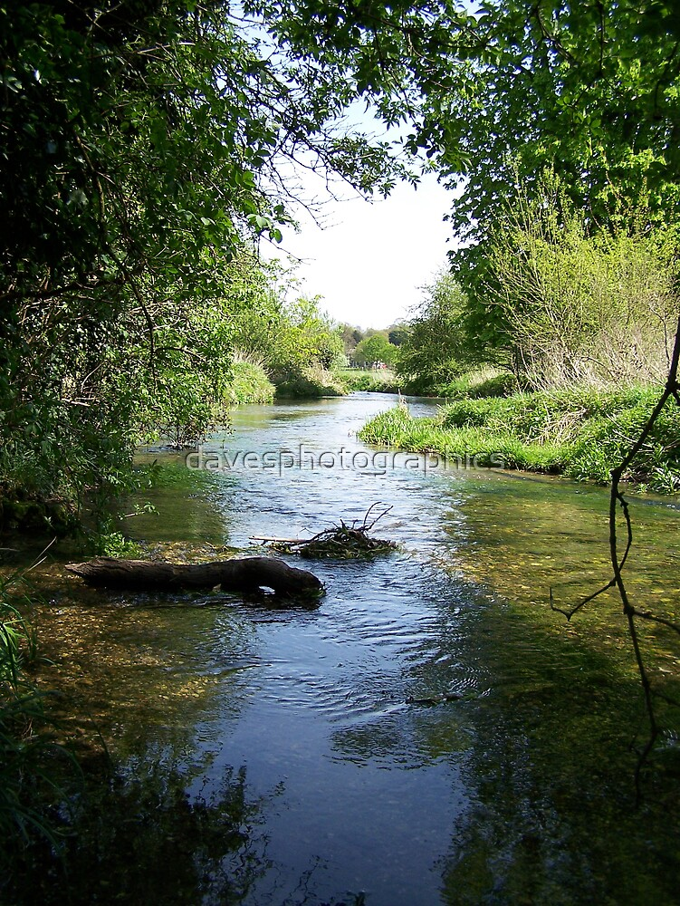 Sunny Day Cool Stream by davesphotographics