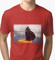 Beautiful butterfly in black, white and orange colors sitting on an orange fruit Tri-blend T-Shirt