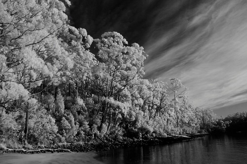 Stewart's Bay by Ian Robertson