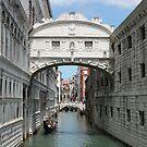 Venice Ponte dei Sospiri by Elena Skvortsova