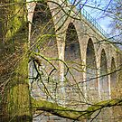 Almondell Viaduct by Tom Gomez