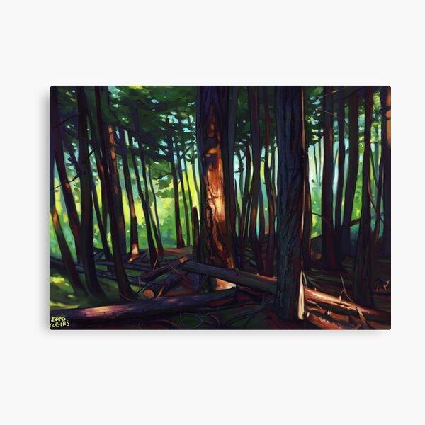 The Summer Lights of British Columbia Canvas Print