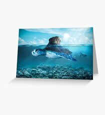 Tortue Greeting Card