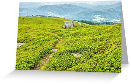 path through hillside in high mountains by mike-pellinni