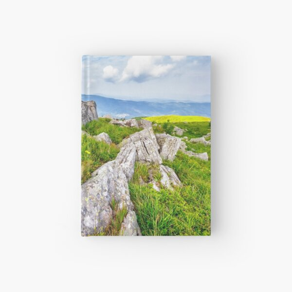 dandelions among the boulders on hill side Hardcover Journal