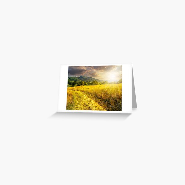 road through a rural meadow on the hillside  at sunset Greeting Card