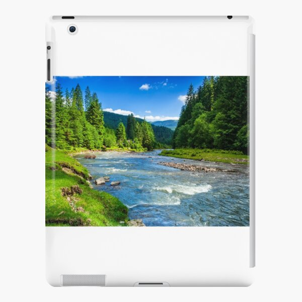 Mountain river in spruce forest iPad Snap Case