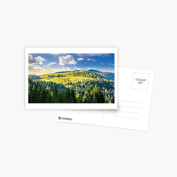 coniferous forest on the hill Postcard