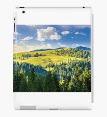 coniferous forest on the hill iPad Case/Skin