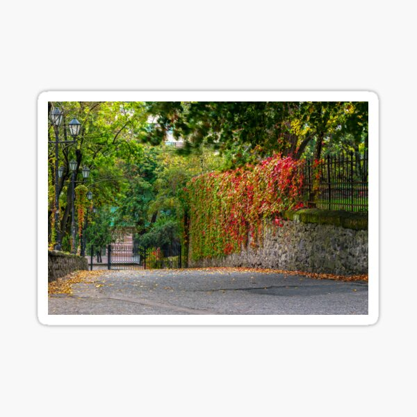 autumn cityscape after rain, with yellowed trees and street lamps Sticker