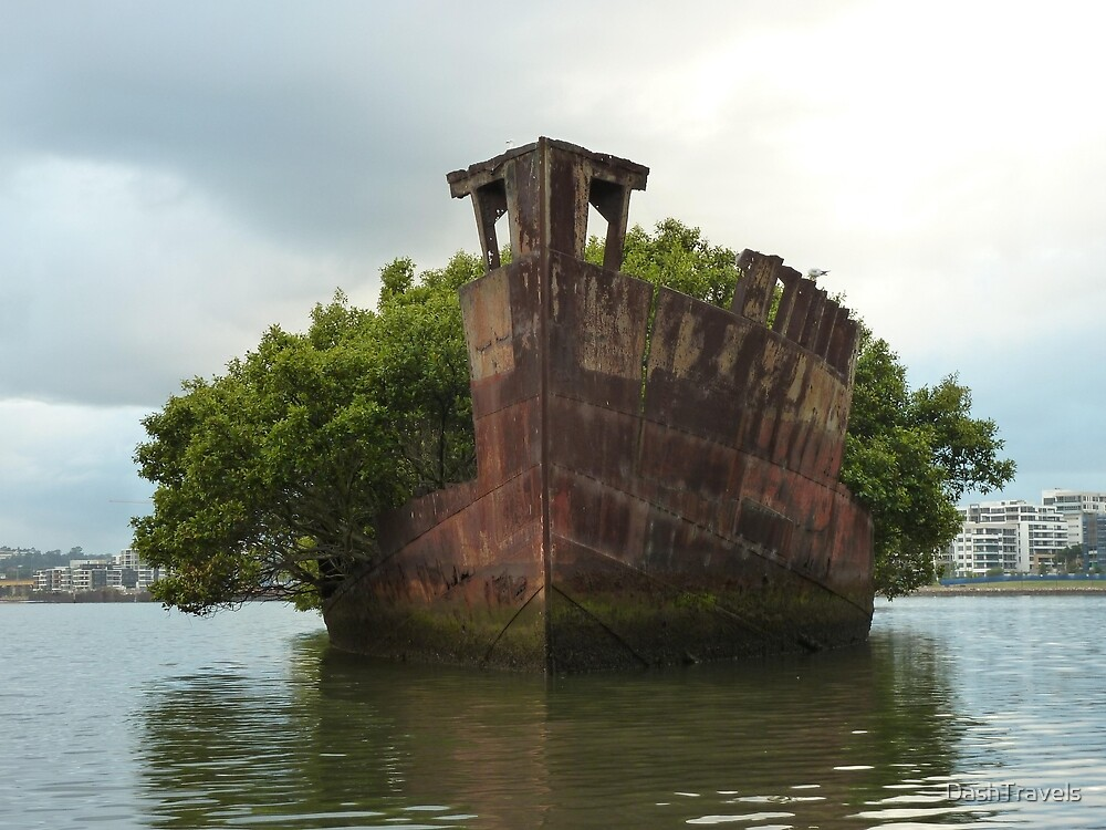 Quot Homebush Bay Wreck Ss Ayrfield Quot By Dashtravels Redbubble