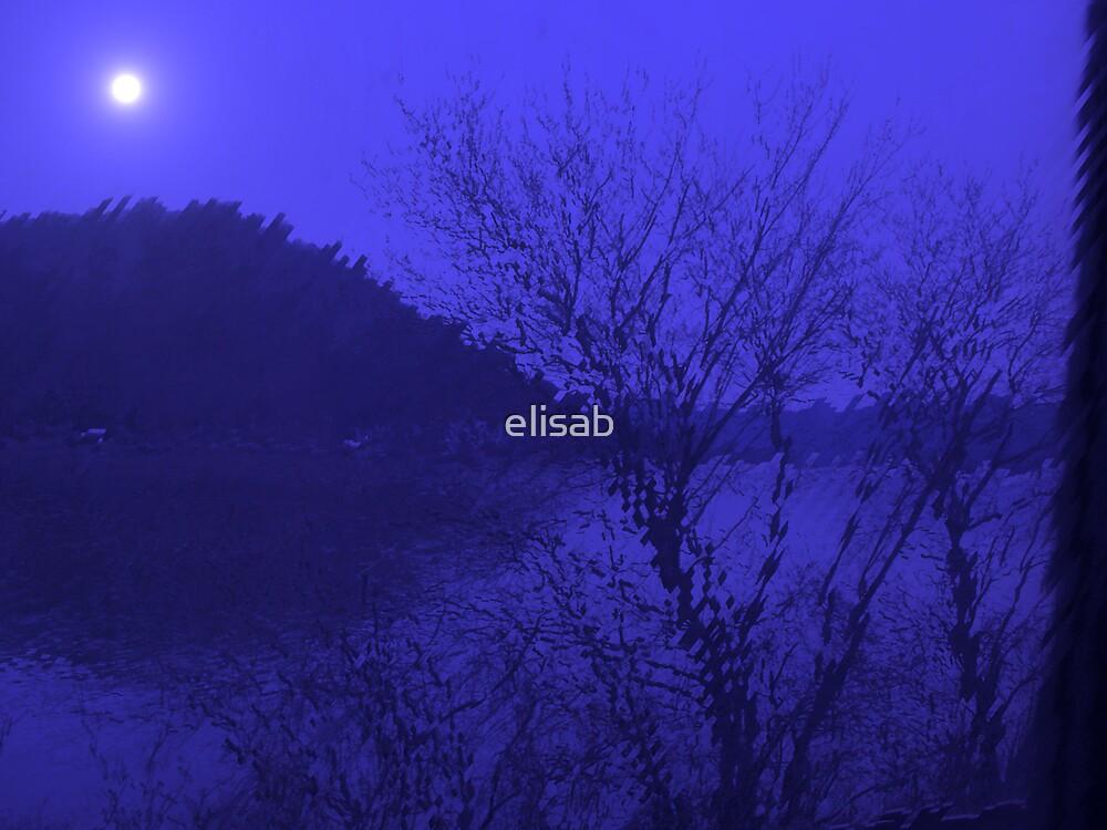 Susquehanna River by elisab