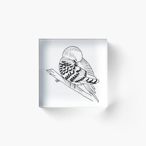 Wellensittich schwarz - weiß Acrylblock