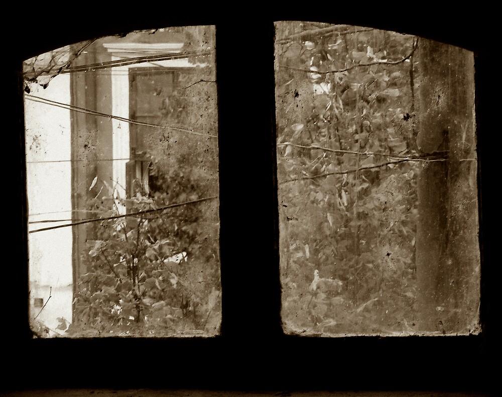 old, dirty window by Rita Iszlai