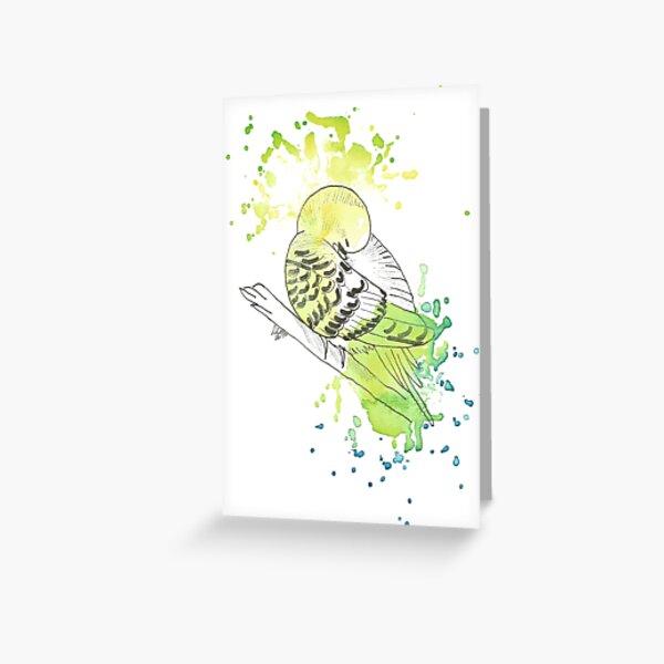 Budgerigar - watercolor Greeting Card