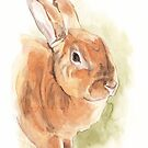 Honey the bunny watercolor by Mike Theuer