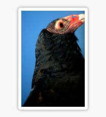Vulture Sticker