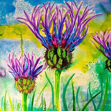 Summer meadow by LaHickmana