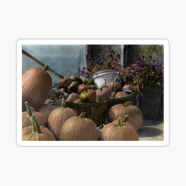 Longview Farm Pumpkins and Flowers Sticker
