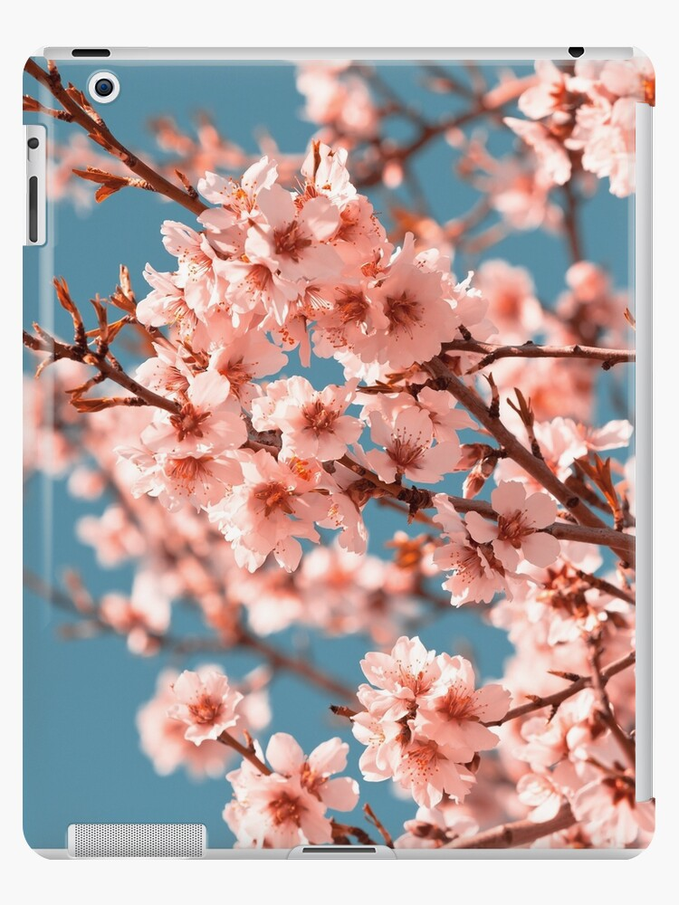 Pink Flowers Blooming Peach Tree At Spring Ipad Case Skin By