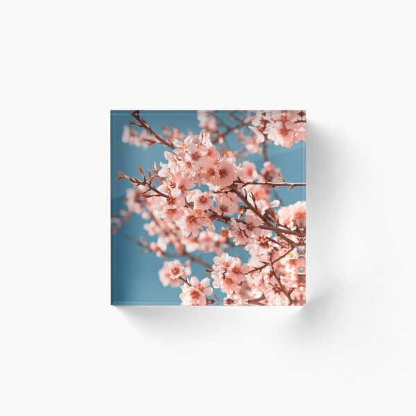 Pink Flowers Blooming Peach Tree at Spring Acrylic Block