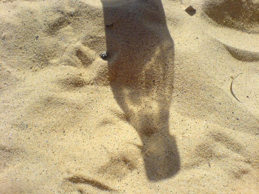 Shadow on beach by pinklioness