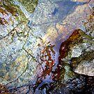 Rockwater I by Kathie Nichols