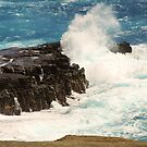 Rocks and Surf by WeeZie
