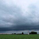 Essex County Farmland by Barry W  King