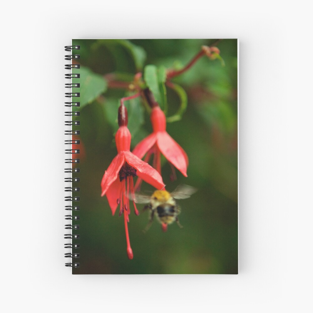 Fuchsia at Loch Na Fooey (wide) Spiral Notebook