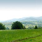 Mountain panorama by wildrain