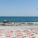 panorama of Costinesti cliff, Black Sea, Romania by wildrain