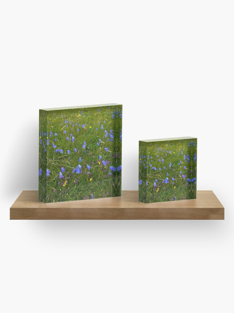 Alternate view of A sea of Harebells, Rossbeg, Co Donegal Acrylic Block