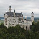 Neuschwanstein Castle by Elena Skvortsova