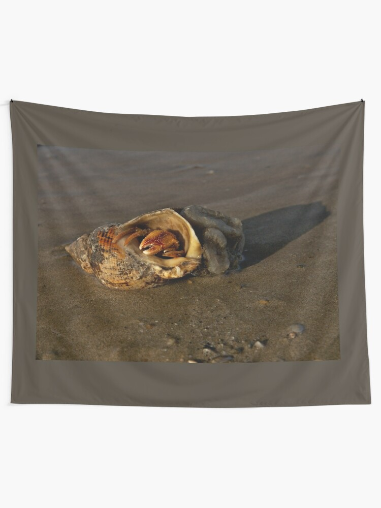 Alternate view of Hermit Crab on Fahan Beach Tapestry