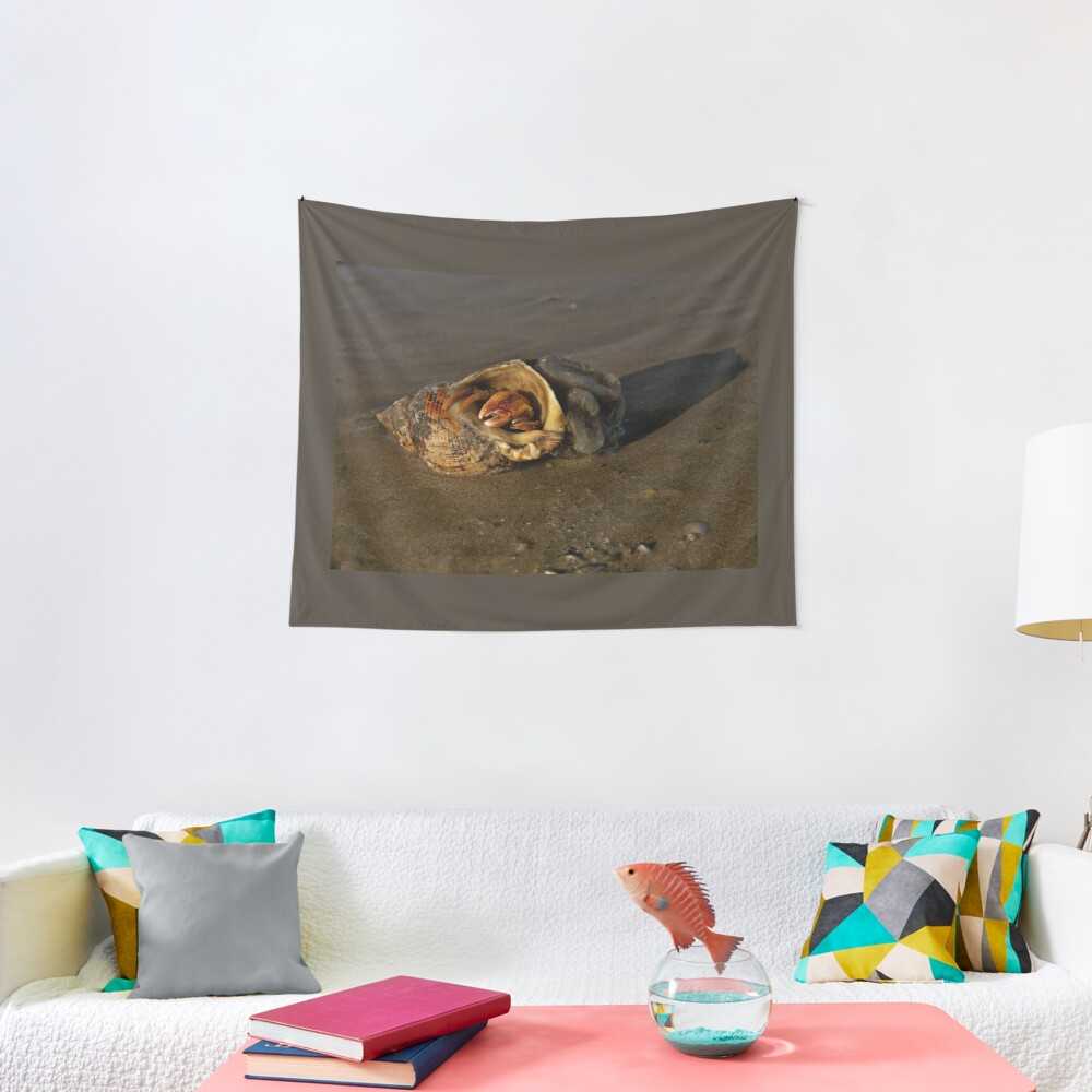 Hermit Crab on Fahan Beach Tapestry