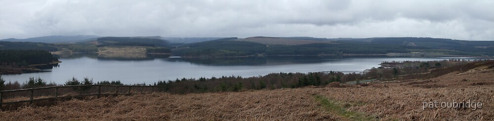 Kielder Panorama by pat oubridge