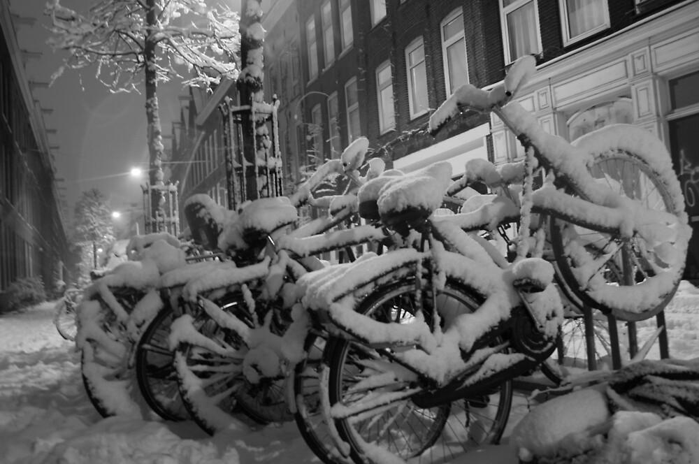 Still Amsterdam by Faith Hunter
