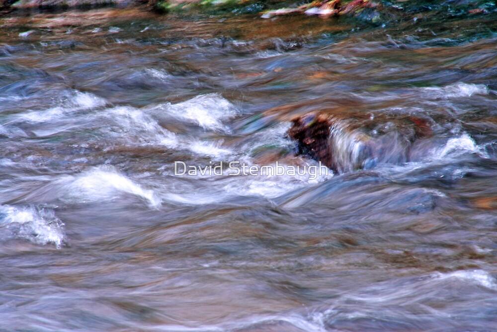 Burnetts Creek by David Stembaugh