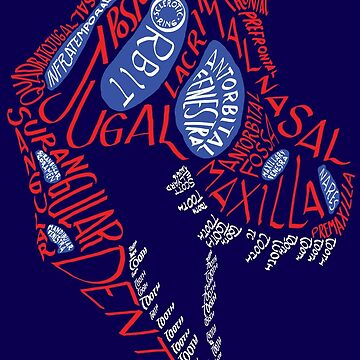 Calligram of the Anatomy of a Tyrannosaur Skull gradient by cubelight