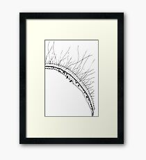 Back to Your Roots Framed Print