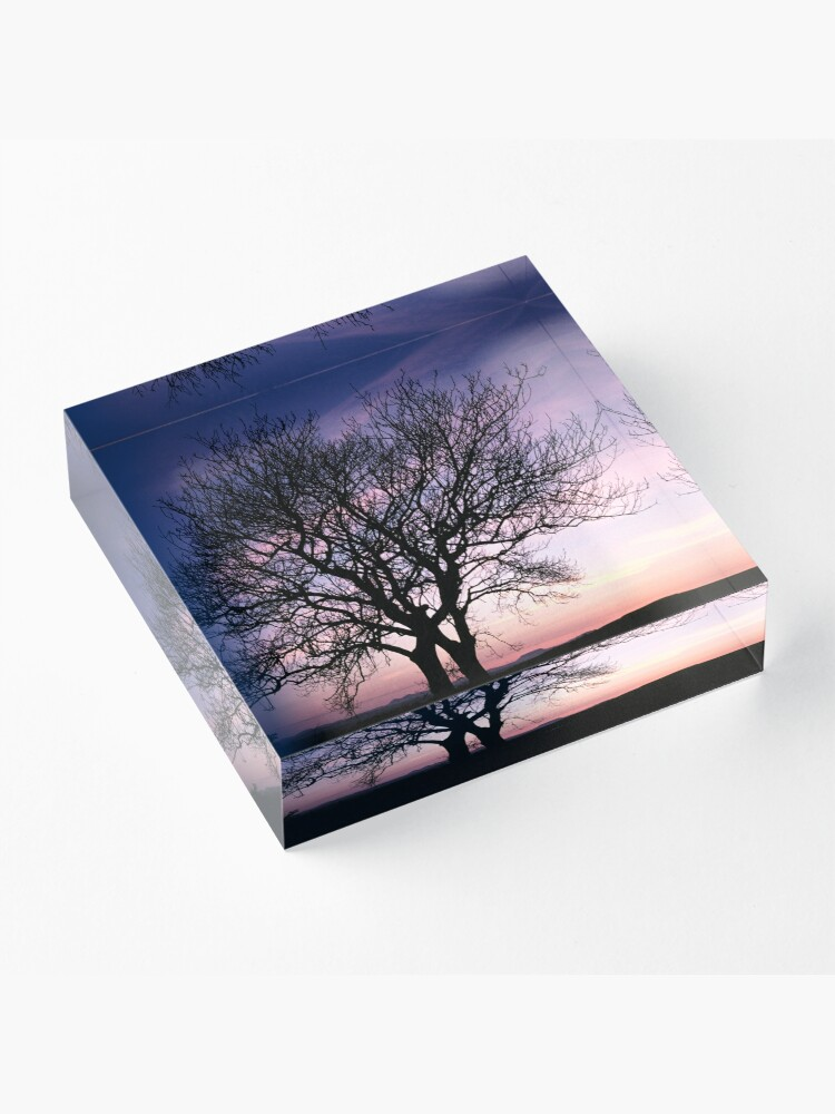Alternate view of Two Trees embracing Acrylic Block