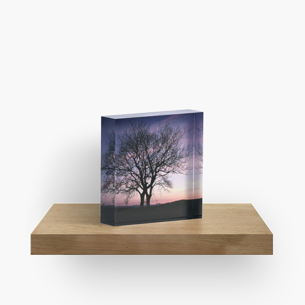 Two Trees embracing Acrylic Block
