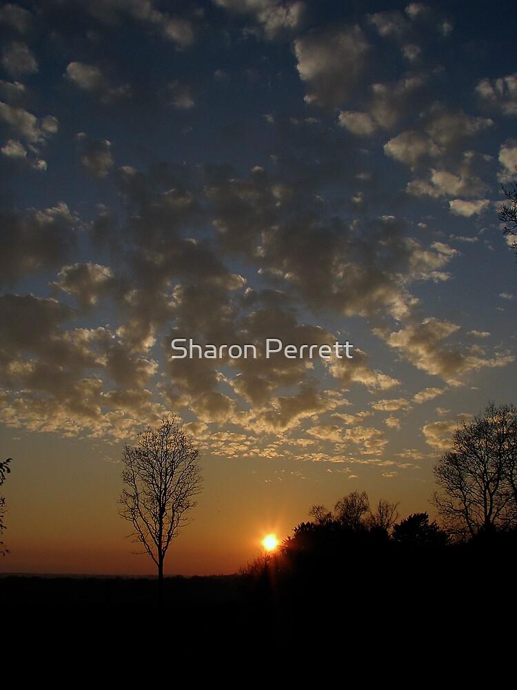 Sunset 2 19-02-08 by Sharon Perrett