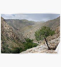 Sentab Valley, Uzbekistan Poster