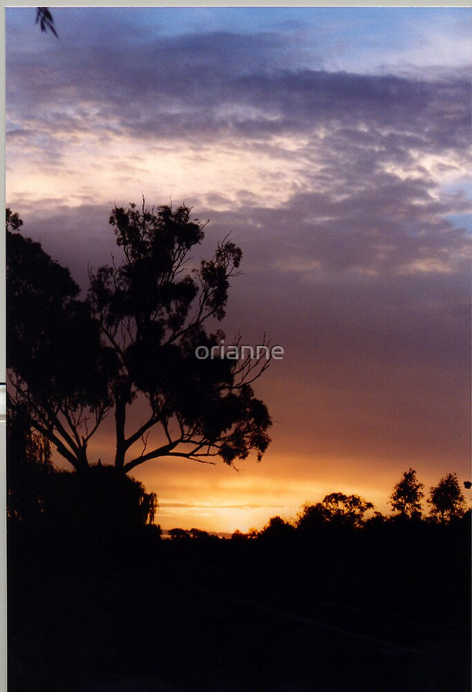 Silhouette by orianne