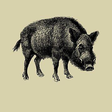 Vintage Wild Boar by TheNewAntique