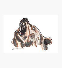 Spirit of Bear - Shamanic Art Photographic Print