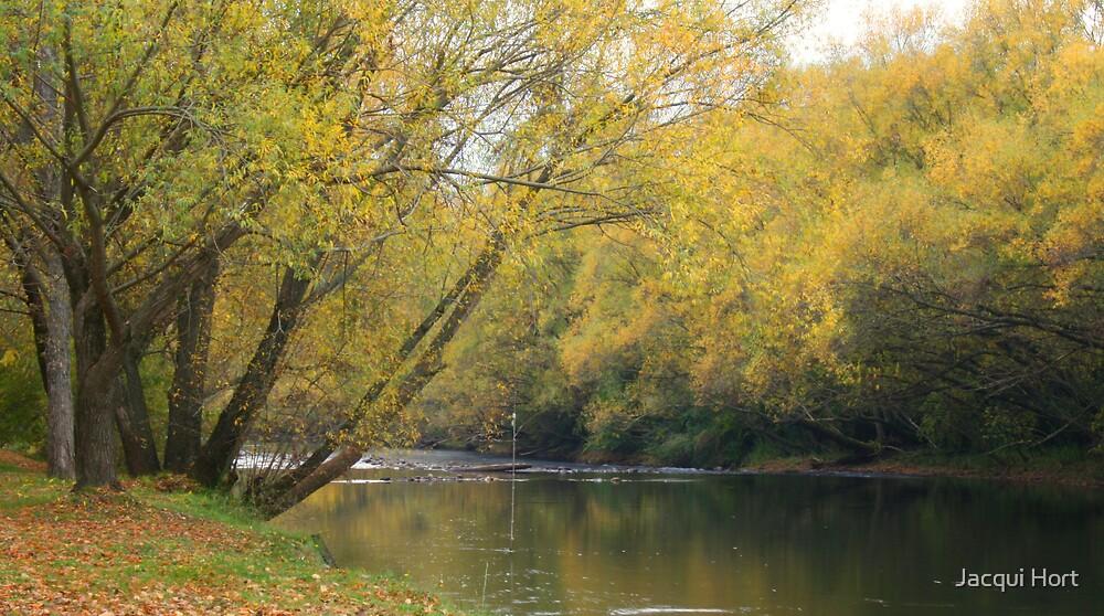 Kiewa River by Jacqui Hort