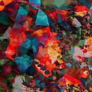 Autumn Ablaze by Stephanie Rachel Seely